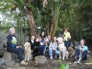 Canine Massage Certification Class 2010